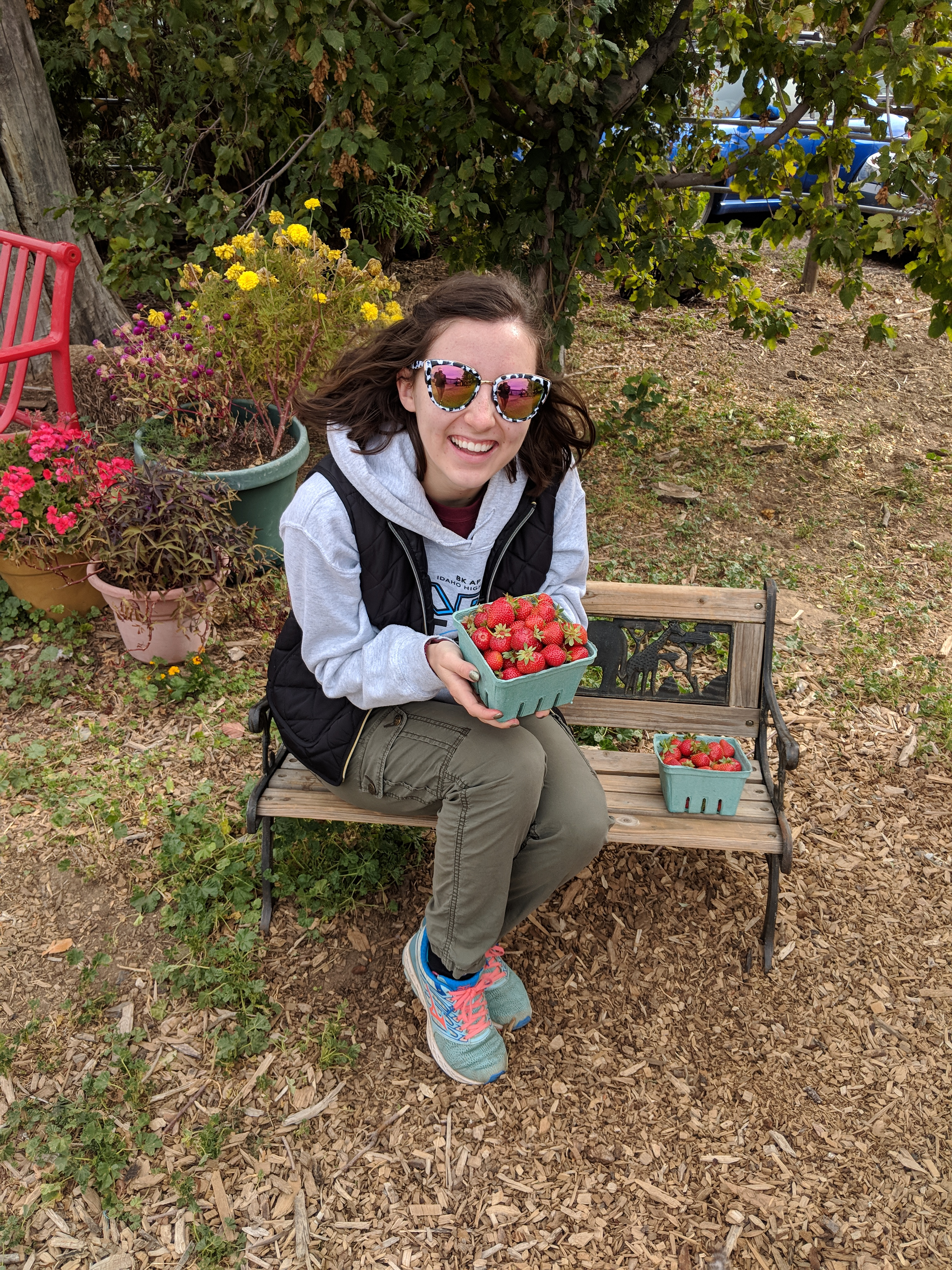 berry farm, berry picking, fall activities
