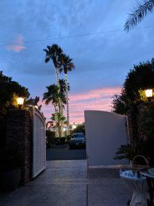 Desert wedding, Las Vegas wedding, sunset, twinkle lights, palm trees