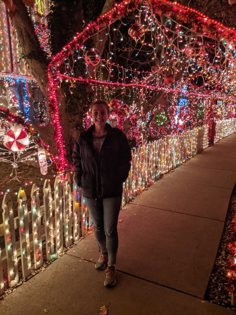 light-show-boise-blogger-christmas-lights