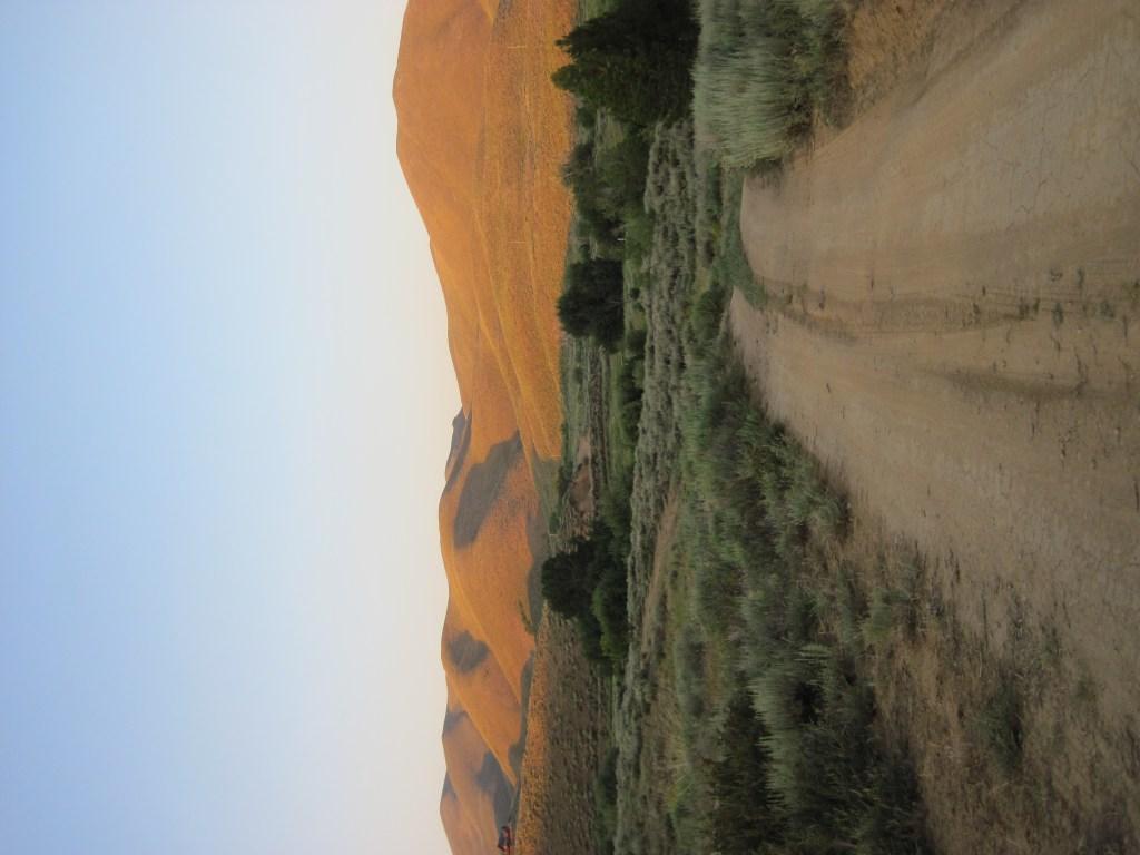 camp-rainbow-gold-hidden-paradise-idaho-campground