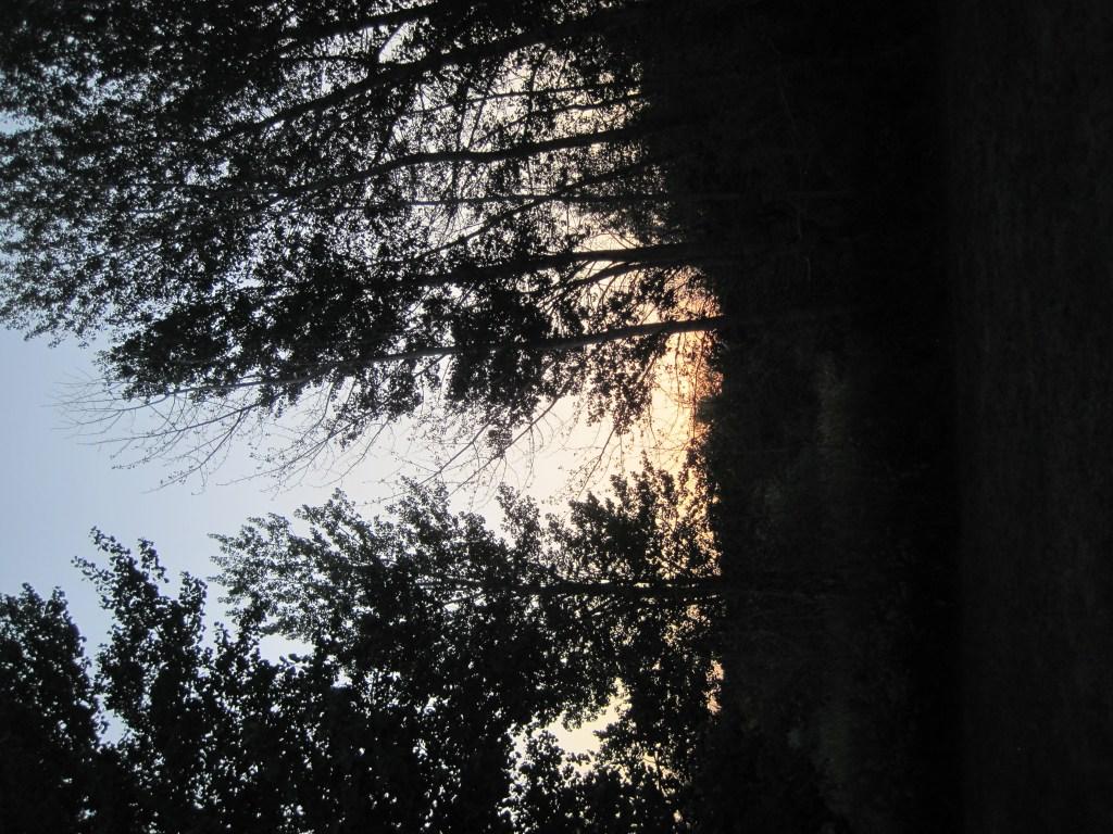 sunset-idaho-camp-rainbow-gold-sibling-camp