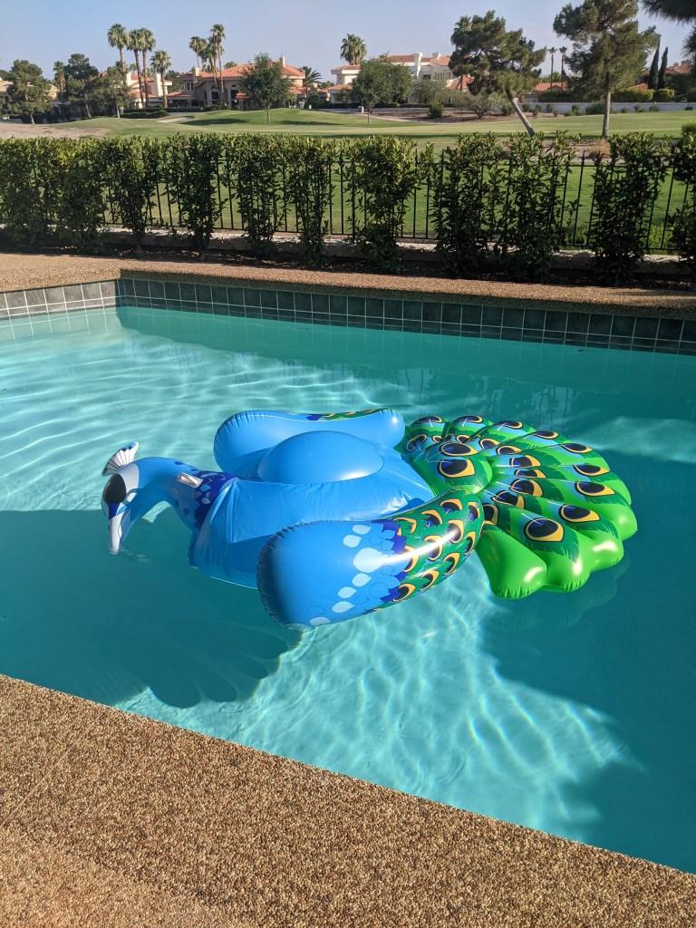 peacock-floaty-pool-float-summer
