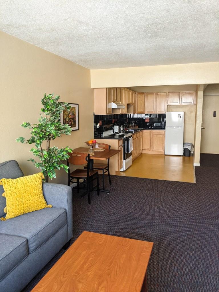yellow-throw-pillow-fake-tree-kitchen-college-apartment